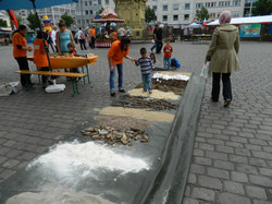 Spaju Fest 2012. 22