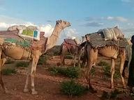 Nothilfe in Südostäthiopien