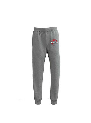 Fleece embroidered joggers