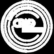 Career Logo_STV_Artboard 1 copy.png