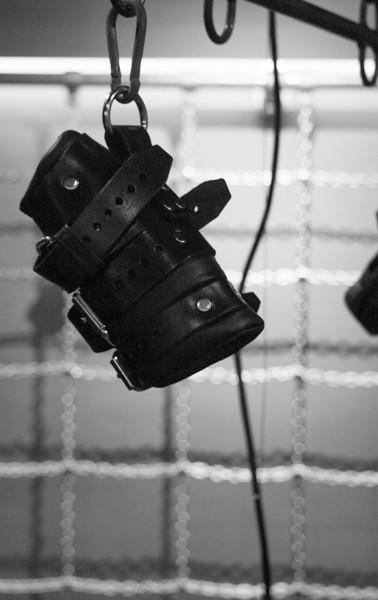 Electric Suspension Hoist