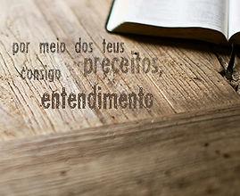 wallpaper-cristao-por-meio-dos-teus-preceitos-consigo-entendimento-biblia_320X480.jpg