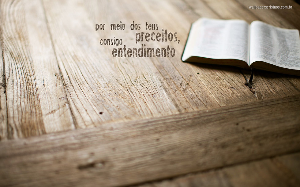 wallpaper-cristao-por-meio-dos-teus-preceitos-consigo-entendimento-biblia_1920X1200.jpg