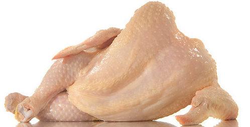 دجاجة كاملة حوالي 2 كلغ