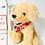 "Thumbnail: Valentine's 16"" Animal Box"