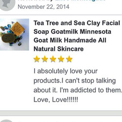 Tea Tree and Sea Clay Review