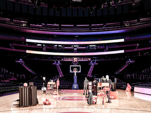 LOUIS VUITTON X NBA CAPSULE COLLECTION