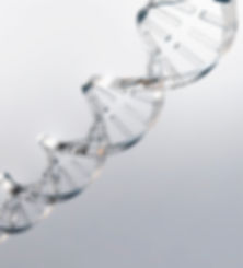 Harmonium Innovation DNA, Innovative Real Medical Solutions