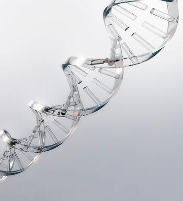 Harmonium Innovation DNA, Innovative Real Medical Solutions