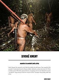 Divoké kmeny