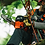 Thumbnail: CS-355T TOP HANDLE CHAIN SAW 14""