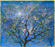 Almond Blossoms with Full Moon
