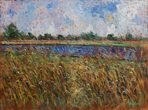 Champ de blé et le lac bleu