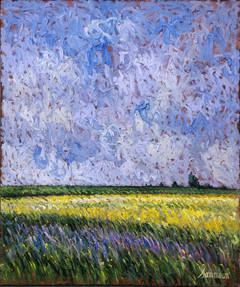 Mustard Field & Wild lupins