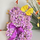 Thumbnail: Purple  Poppy Bear