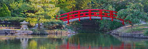 Duke Bridge- North Carolina