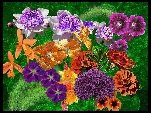 Orange, Green, Purples