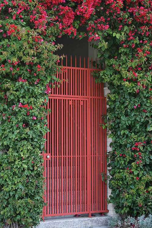 Red Door- San Francisco