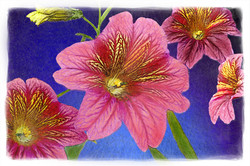 Cranberry & Navy Flowers Watercolor Web copy