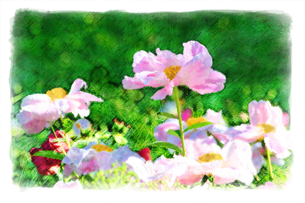 Watercolor Flower Scene Web copy