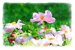 Watercolor Flower Scene Web copy