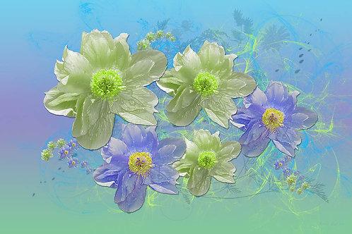 Swift Flowers