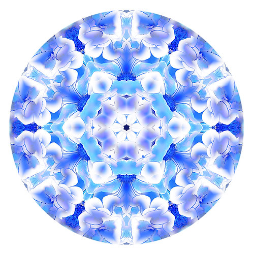 Mandala Watercolor Overlay