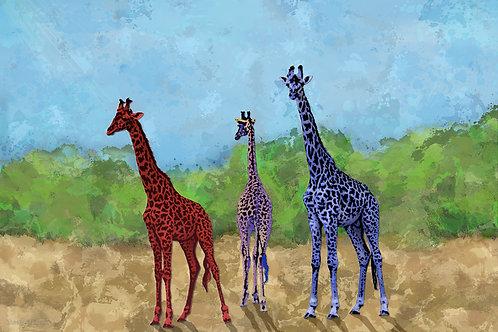 Giraffes of Kenya & Tanzania