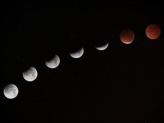 With Eclipses & Retrogrades Comes Transformation....