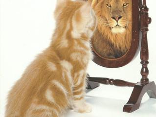 1st Leo New Moon ~ Let Your Inner Kitten Roar