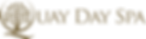 QDS-Logo_landscape-BROWN.png