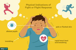 physical indications of fight or flight response