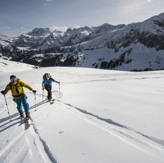Alpine Touring