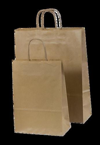 Brown Paper Bag Twisted Handle