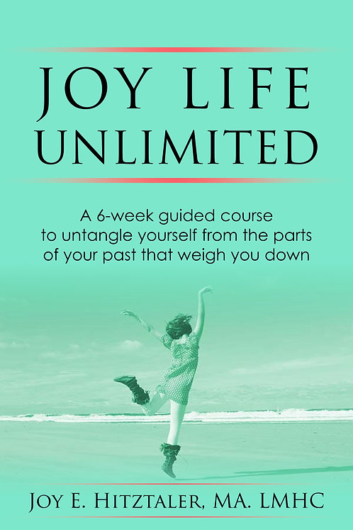 Joy Life Unlimited workbook