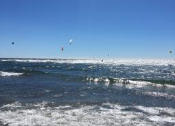 the amazing wave...