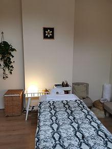 Room picture fleece snakeprint-min.jpg