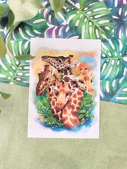 Giraffe Group Print