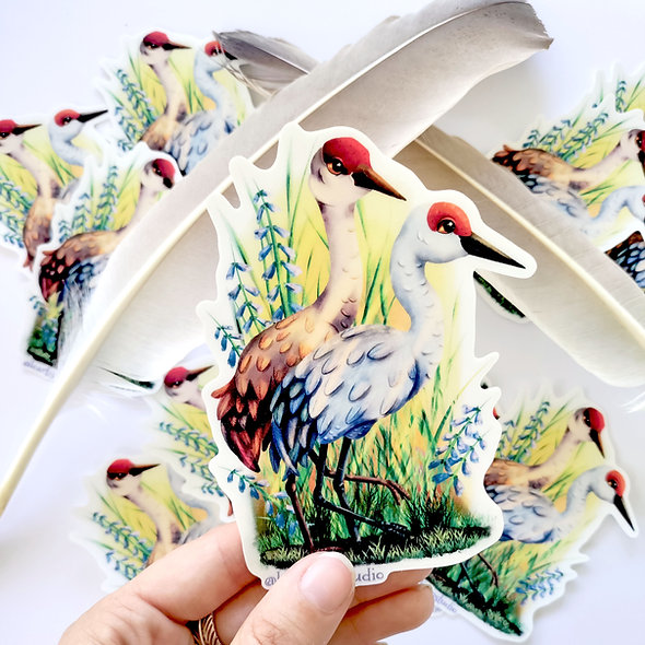 Sandhill Crane Stickers