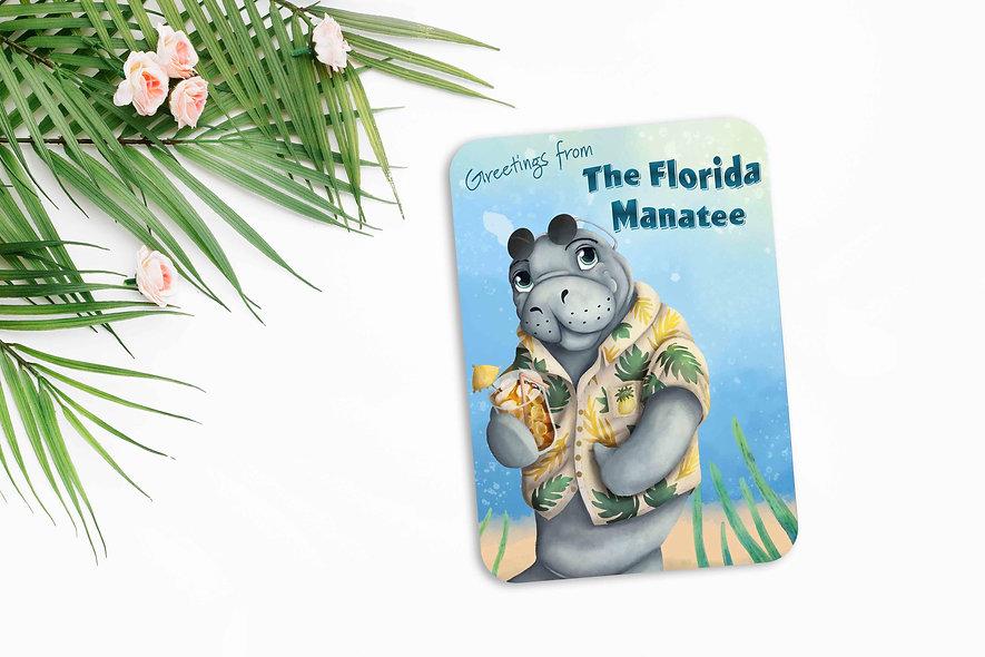 Florida Manatee Post Card