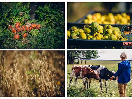 Projekta ATLAS aptauja Latvijas lauksaimniekiem