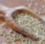 kakie-vitamini-v-grechke-poleznie-svojst