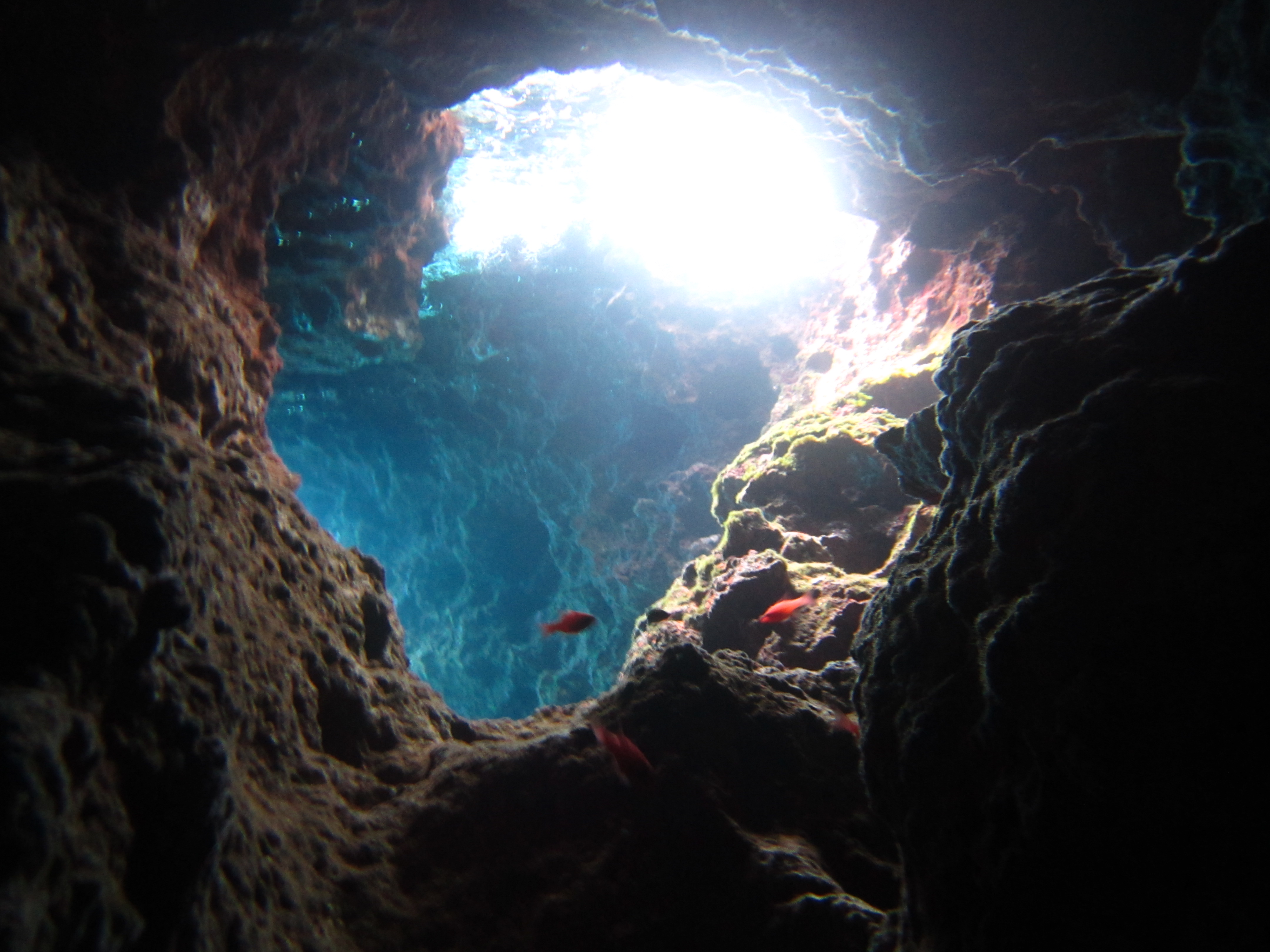 Cueva Blanca