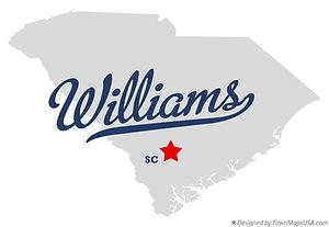 Town of Williams Logo.jpg