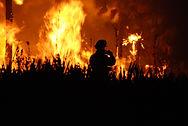 Cannabis Fire Insurance
