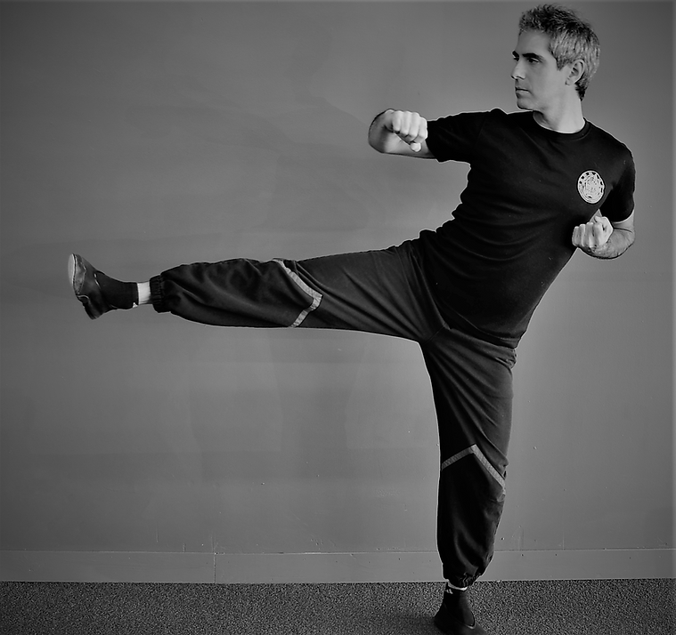 Adam Patt Wing Tsun Side Kick.png