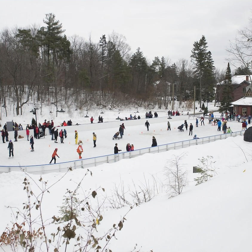 Annual Skating Party!