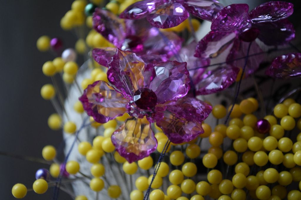 FLOWERS GROWING AGAINST PINS