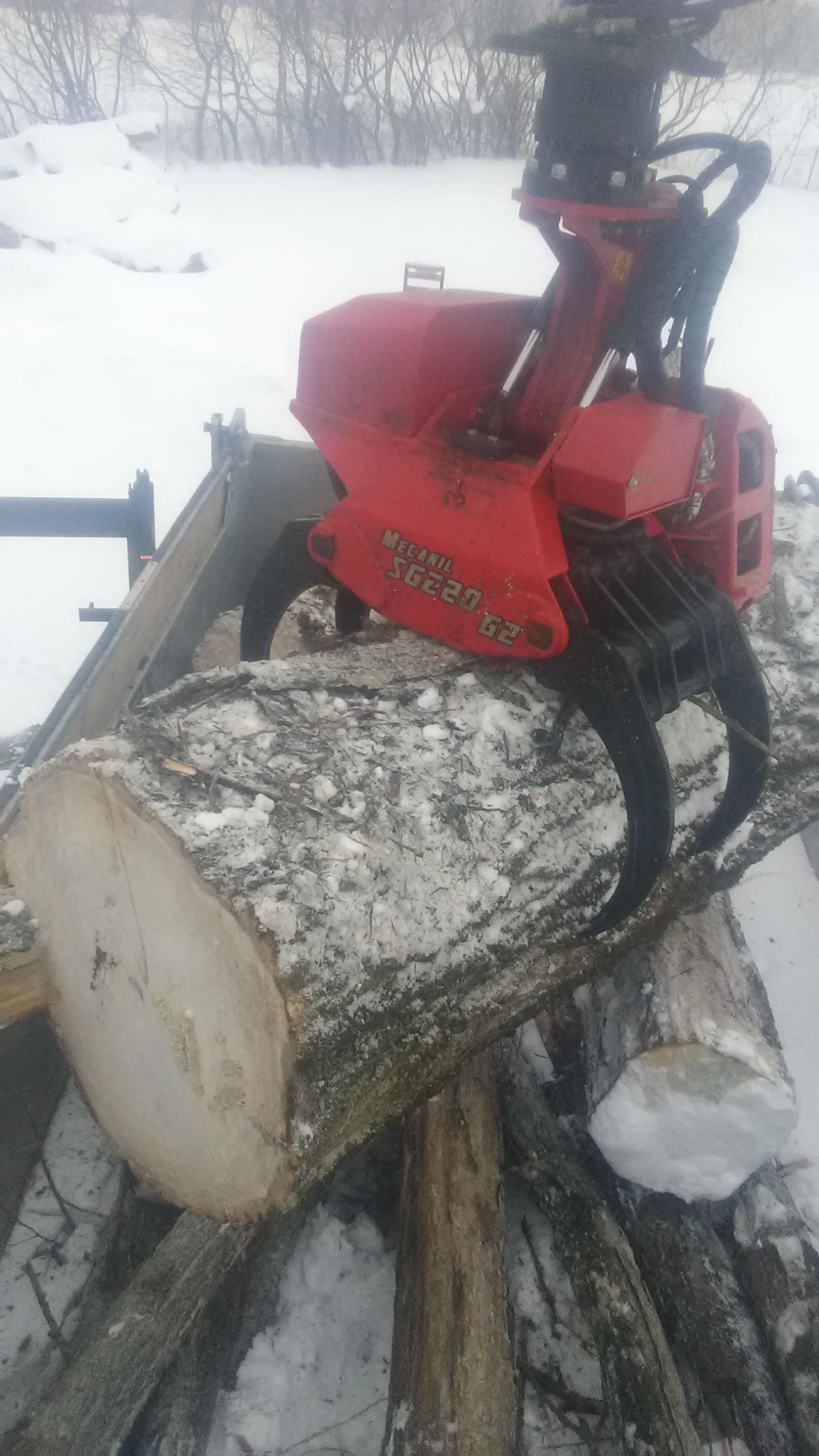 Loading Logs Into The 10 Wheeler
