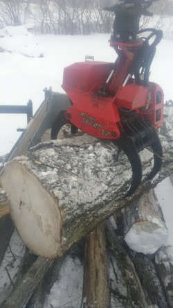 Loading Logs Into The 10 Wheeler